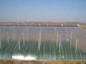 温室大棚膜的加固方法